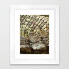 living fossil Framed Art Print