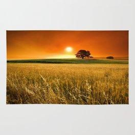 Oklahoma Wheat Field Rug