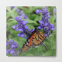 Purple Flowers & Butterfly Metal Print