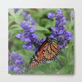 Purple Flowers & Butterfly Metal Print