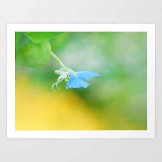 Tiny Butterfly Art Print