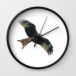 Red Kite in flight Wall Clock