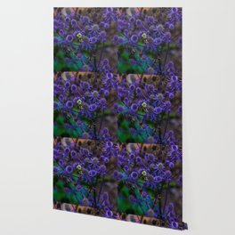 The Collector of Purple Wallpaper