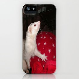 The Ivory Ferret and the Starry Red Bouncy House iPhone Case