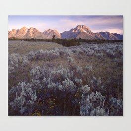 Mount Moran Canvas Print