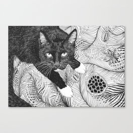 cat in black and white III Canvas Print