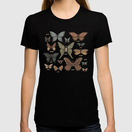 Butterflies and Moth Specimens T-shirt