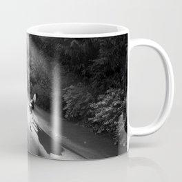 Dog in morning sunlight Coffee Mug