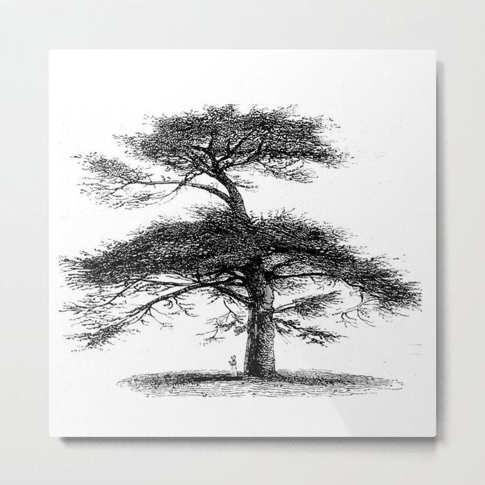 Big tree Metal Print