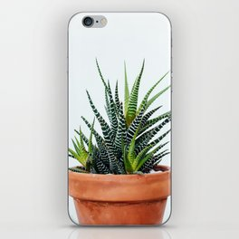 Zebra Plant iPhone Skin