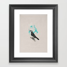 ARACARI Framed Art Print