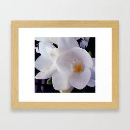 white flower with something orange Framed Art Print