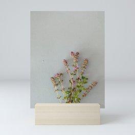 Thyme blossom | Flower photography Mini Art Print