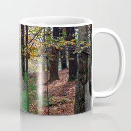 Catskills Forest in Autumn Coffee Mug