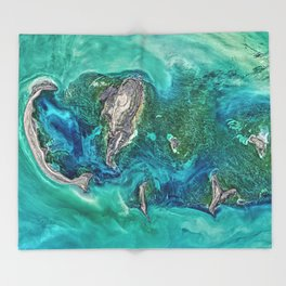 Ice Scours the North Caspian Sea Throw Blanket