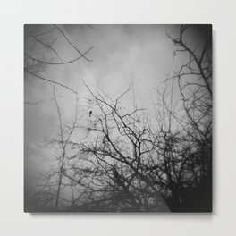Branches and Bird Metal Print
