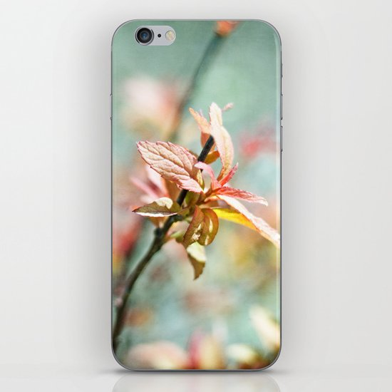 Color Bloom iPhone Skin