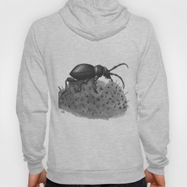 Inktobober 2016: Cactus Longhorn Beetle Hoody