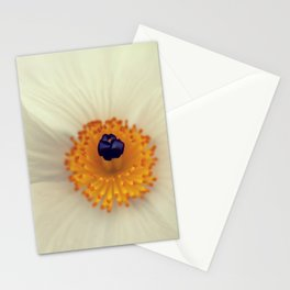 White Argemone Flower Photograph Stationery Cards