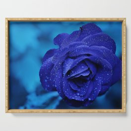 Blue Rose With Rain Drops Serving Tray