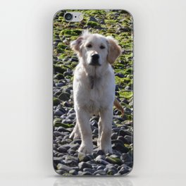 time for walkies iPhone Skin