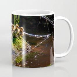 Mallard ducklings on a stone Coffee Mug