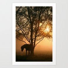 Silhouette of a horse Art Print