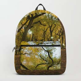 Central Park New York City Backpack