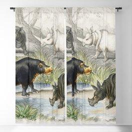 Hippopotamus Indian Rhinoceros Muchoco White Rhinoceros Two Horned African Rhinoceros and Malay Tapi Blackout Curtain