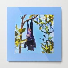 A flying fox (fruit bat) just hanging around Metal Print