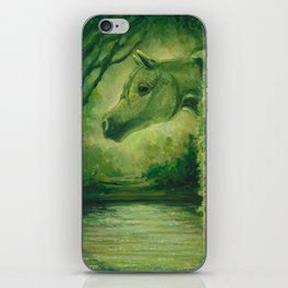 OasisMaker iPhone Skin