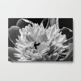 Black and White Peony 2 Metal Print
