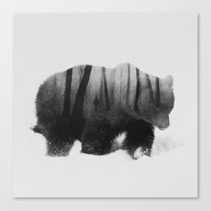 Watched By Grizzly b&w Canvas Print