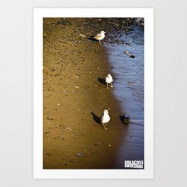 Line of Seagulls on the Hudson Art Print