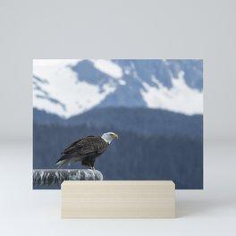 Bald Eagle of Resurrection Bay, No. 1 Mini Art Print