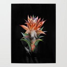 Erotic Guzmania flower Poster