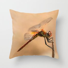 Painted Dragonfly Isolated Against Ecru Throw Pillow