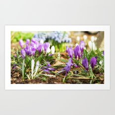 Come with us to the spring awakening Art Print