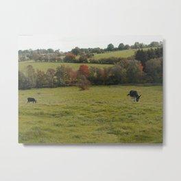 Donkeys in an Autumn Landscape Metal Print