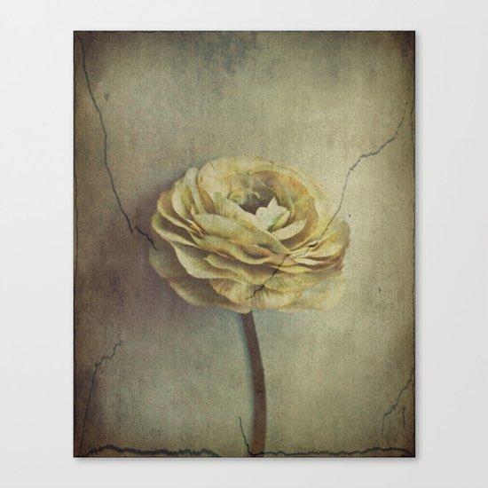 Vintage Blossoms Canvas Print