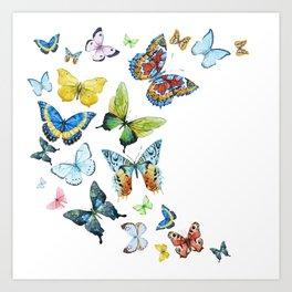 Butterflies 03 Art Print