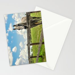 Horse Sanctuary for Abused and Neglected Horses Stationery Cards