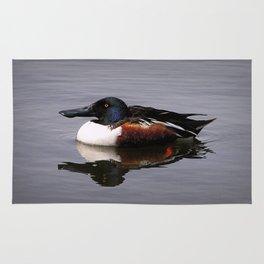 Shoveler Duck Rug