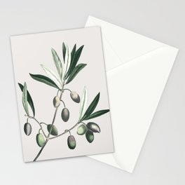 Olive Tree Branch Stationery Cards