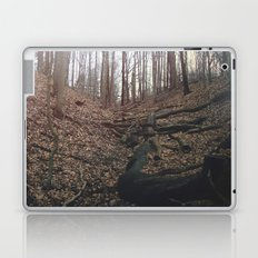 Hike Laptop & iPad Skin