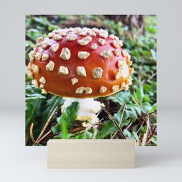 Baby Fly Agaric Mushroom by Seasons Kaz Sparks Mini Art Print