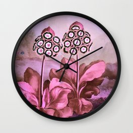 Pink Auriculas Temple of Flora Wall Clock