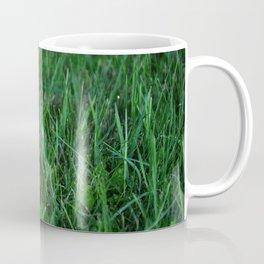 Mushroom Magic Coffee Mug