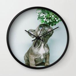 Christmas Pup Under Mistletoe (Color) Wall Clock