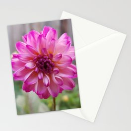 Costa rica nature wild colorful flower Stationery Cards
